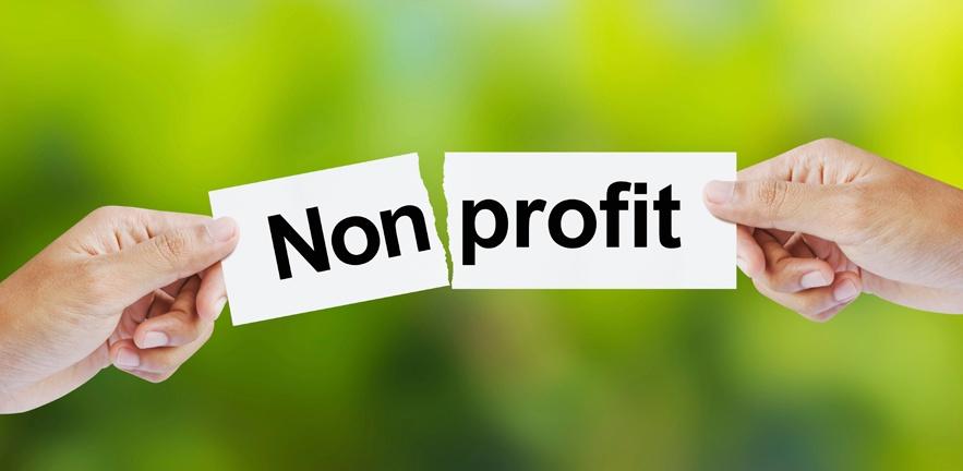 managing-nonprofits-vs-profits-883x432.jpeg